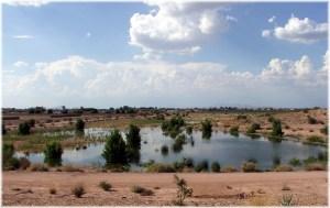 recharge-basin-veterans-oasis-park