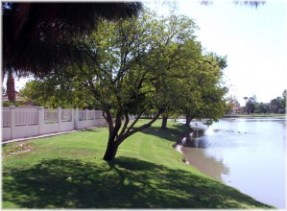 Green belt between homes and lake in Wellington Estates
