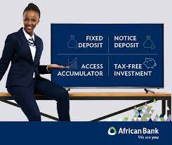 African Bank Investments