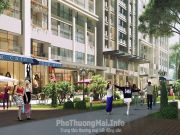 Shophouse đức long new land