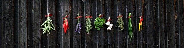 Tanaman Herbal di Indonesia