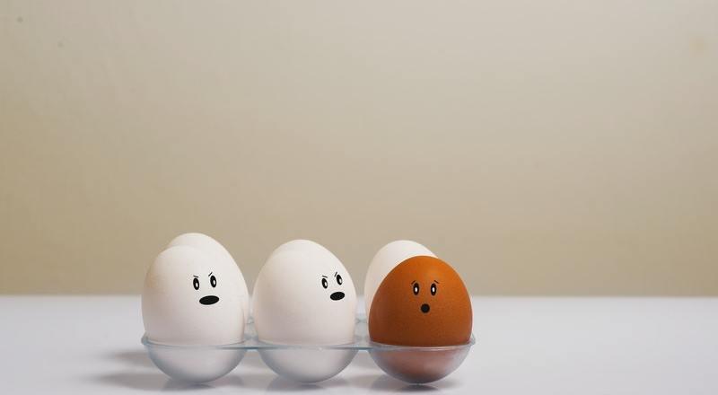 Kandungan dan Manfaat Telur Ayam Kampung