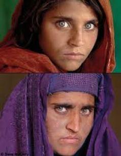 petit afghane aux yeux verts jeune et plus agée