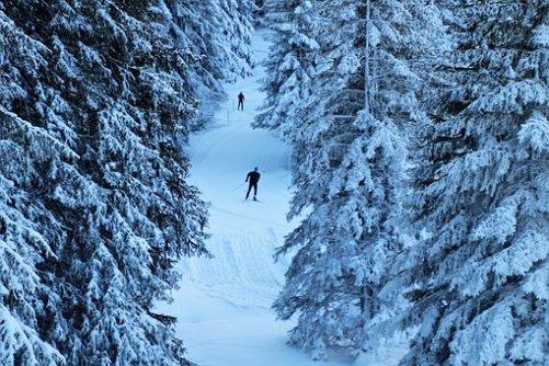 balance des blancs pour photographier la neige