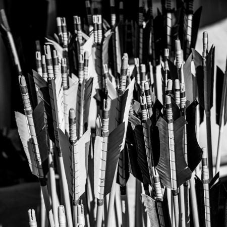 flèches dans carcan challenge photo 52 en noir & blanc
