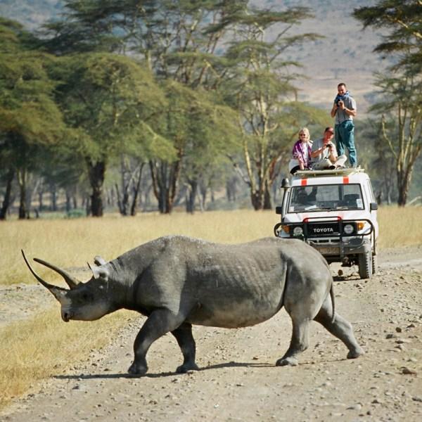 Kenya ©Cyndie Burkhardt.