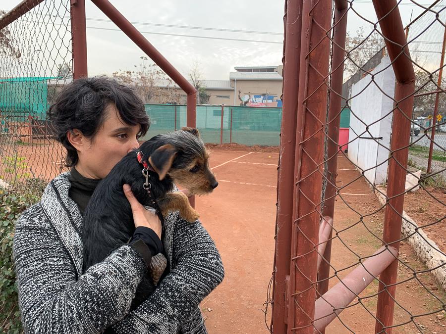 Monse and Her Puppy, Santiago, Chile ©2019, Cyndie Burkhardt.