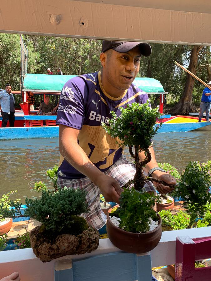 Trajinera plant vendor, Xochimilco, Mexico ©2019, Cyndie Burkhardt
