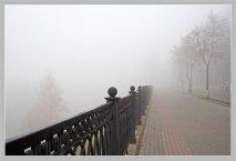 Такого тумана я давно не видела