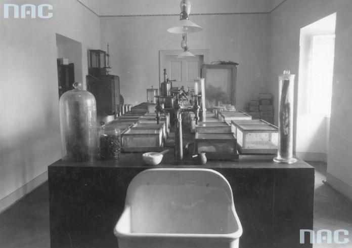 Рільничо-лісовий факультет Львівської політехніки. У хімічній лабораторії досліджують шкідників лісу, 1920 - 1939