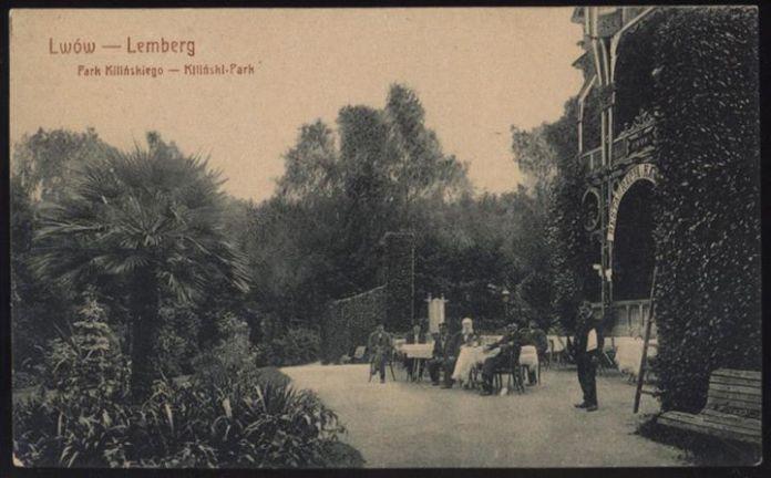 Пальмии у сучасному Стрийському парку (колись парк Кілінського)