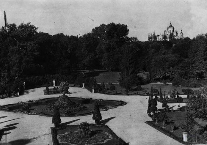 Пальмии у сучасному парку імені Івана Франка (колись парк імені Тадеуша Костюшка)