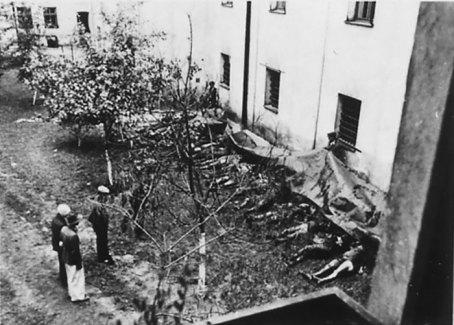 Впізнання загиблих. Фото 3 липня 1941 р.