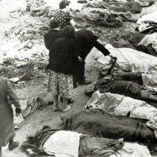 Львів'яни шукають серед розстріляних своїх рідних у подвір'ї в'язниці № 1. м. Львів, 3 липня 1941 р.