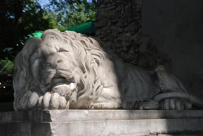 леви Львова