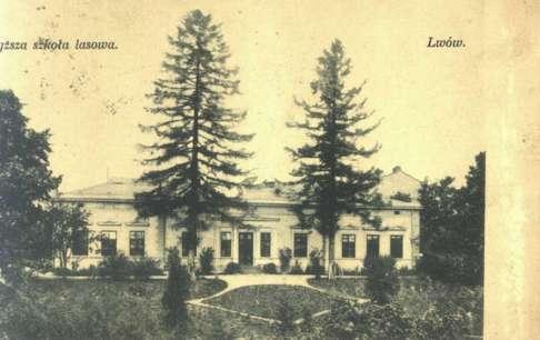Лісова школа у Львові на поштівці початку XX сторіччя