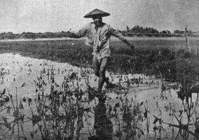 Цей льо-льот не бачить мого апарату, Китай, 1930-ті рр. (фото С. Яблонської)