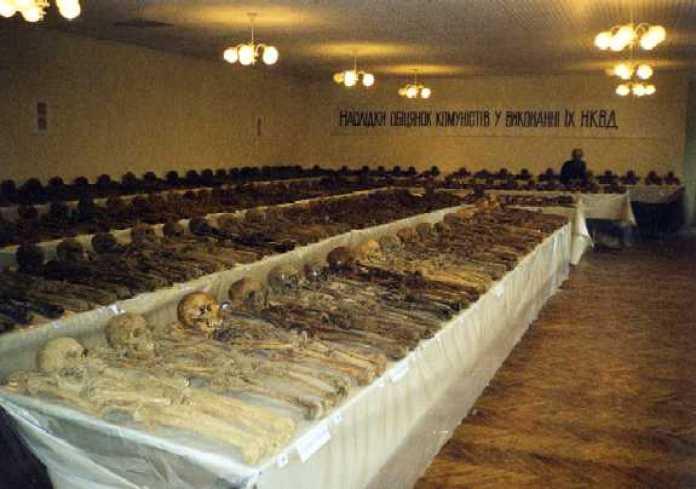 Ексгумовані останки з кладовища жертв НКВС на Топольній