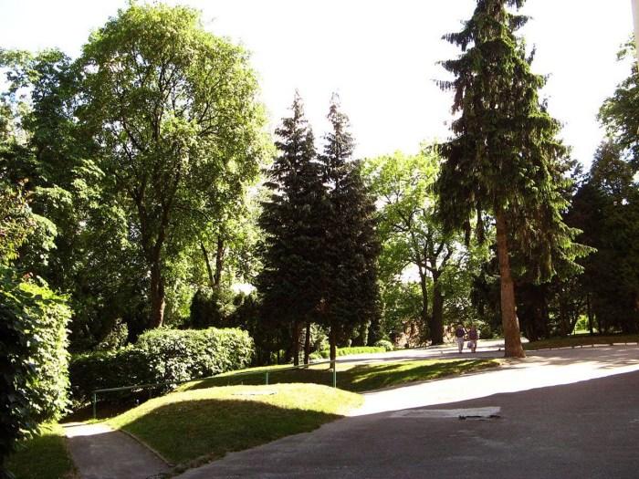 Горішня частина ботанічного саду львівського лісотехнічного університету