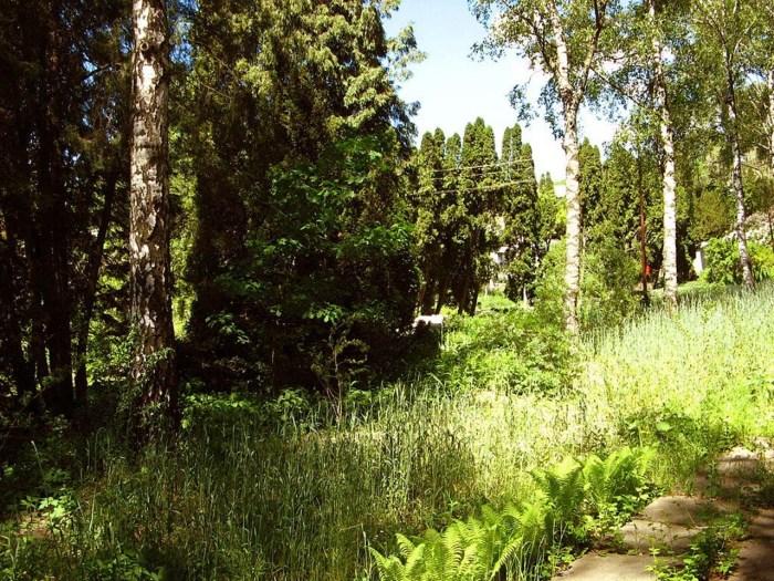 На території саду, вул. Пекарська, 73