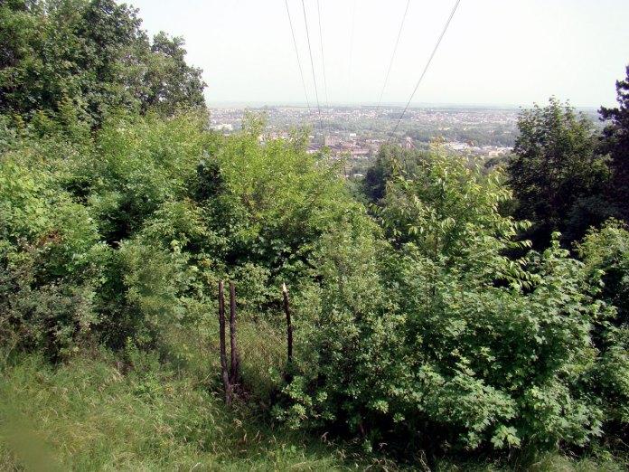 Краєвид зі львівського Святовитового поля. Фото: Ксенія Янко