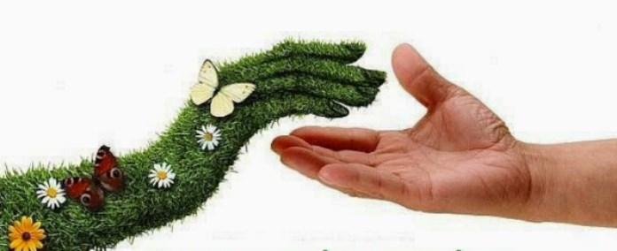 Один з варіантів відносин між людиною і природою. Фото з umanchildrlib2.blogspot.com