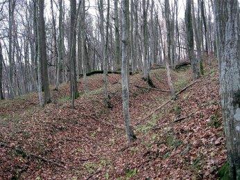 Оборонні вали в горішній частині городища Деревач.