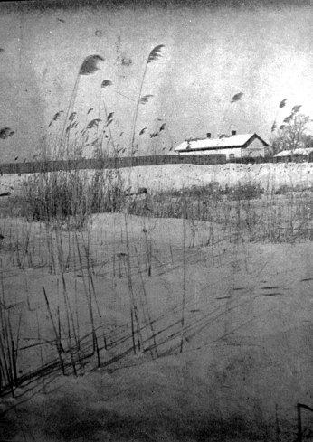 Ярослав Масляк. Шуварі (перша нагорода на конкурсі «Зима»), 1935 р. (Світло й Тінь. – 1935. – Ч. 4)