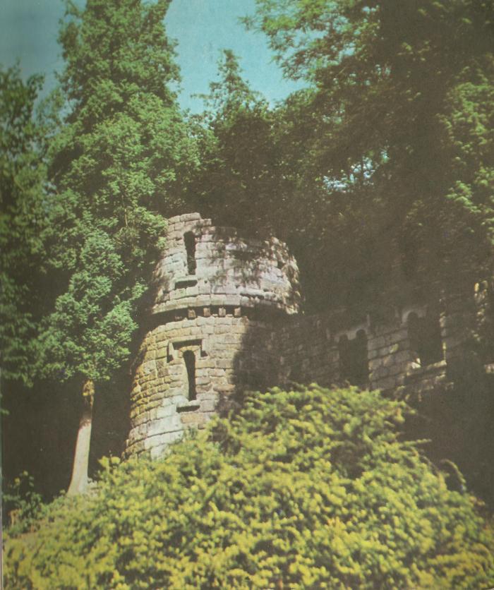 Стрийський парк. Штучні замкові руїни