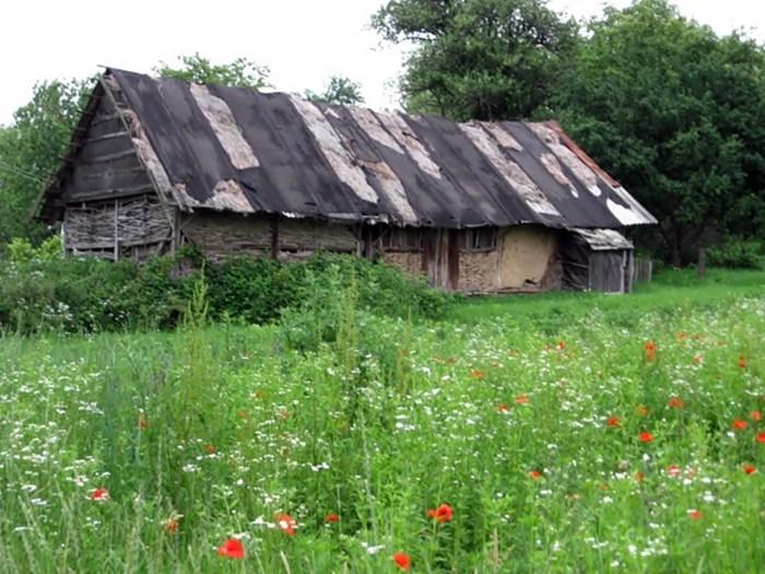 Господарська будівля на хуторі Вінява