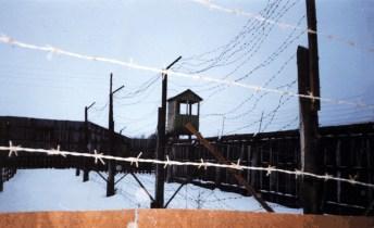 Фото табору Кучино , де відбував покарання Левко Лук'яненко . Із архівута Василя Овсієнка. Фото представлене істориком Ярославом Файзуліним (https://focus.ua/society/351807/)