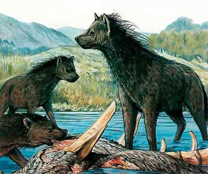 Печерні гієни - малюнок реконструкція