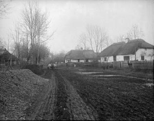 Грунтова дорога у галицькому селі