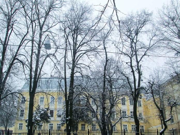 Палац Дідушицьких. Фото Мар'яни Іванишин