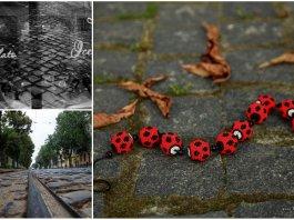 """Фотопроект """" #львів #бруківка #бандери """" стартує вже в суботу"""