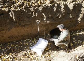 Ексгумація тіл німецьких солдатів Другої світової війни на колишньому військовому кладовищі