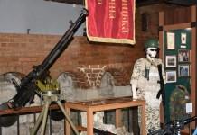 Урочистості з нагоди Дня українських миротворців