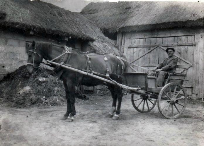 У господі Матчуків, 1930-і рр.