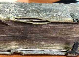 [Biblia] Novum Testamentum latinum у перекладі Себастіана Кастеліо. – Coloniae, 1564