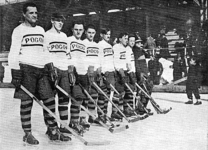 Хокейна команда «Погонь» (Львів)