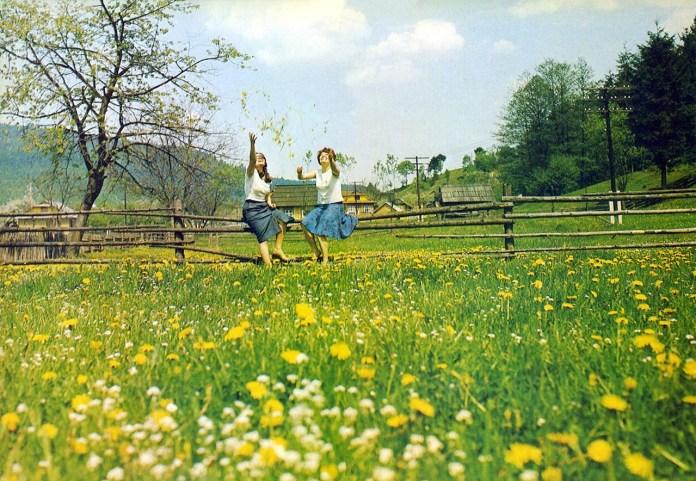 Карпатська весна, Львівщина. 1980-ті роки