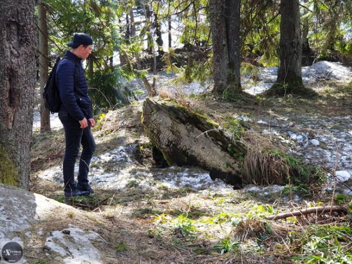 Іван йшов попереду і першим натрапив на цей камінь. Вершина Зелемінь на задньому плані