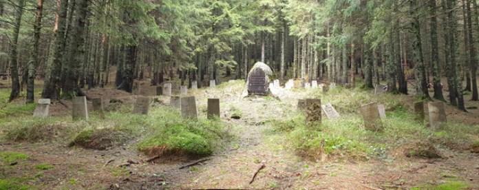 Старий німецький цвинтар під Говерлою