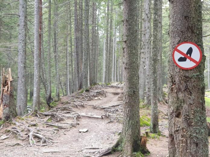 В гори потрібно ходити підготовленими!