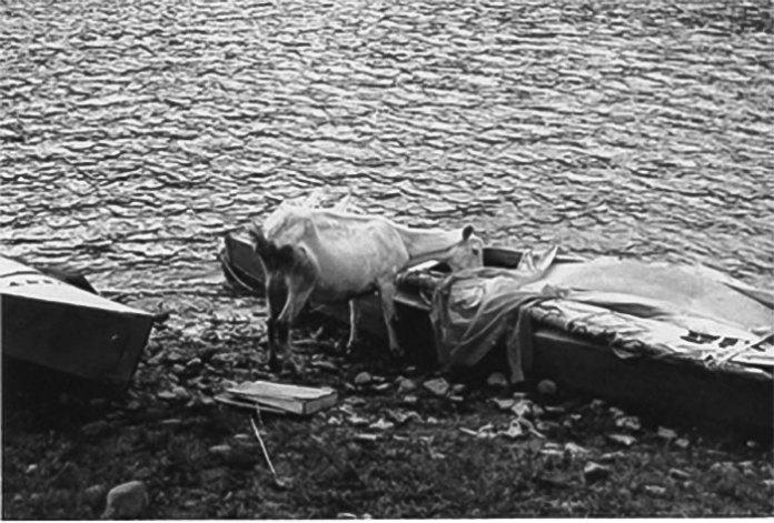 Прийшла коза рогата… Дністер, 1970-і роки. Світлив Олександр Кіцера