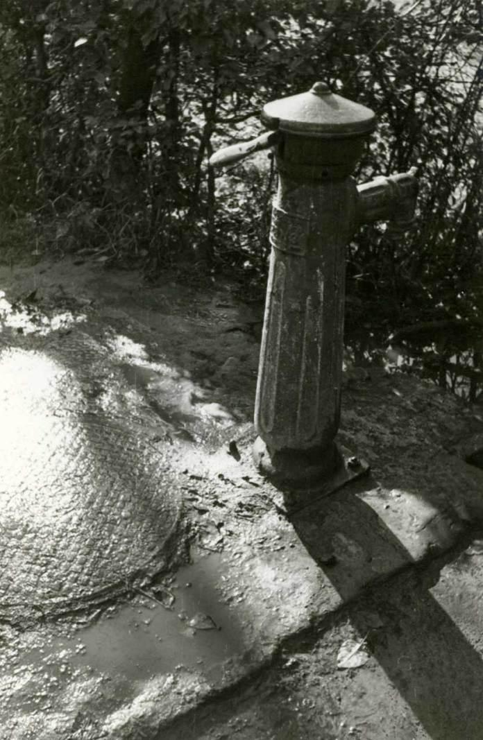Львів, Пасіки, жовтень 1960 року. Світлина Юліана Дороша