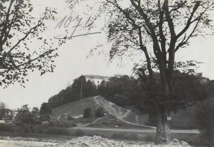 Палац в селі Підкамінь, фото до 1939 року