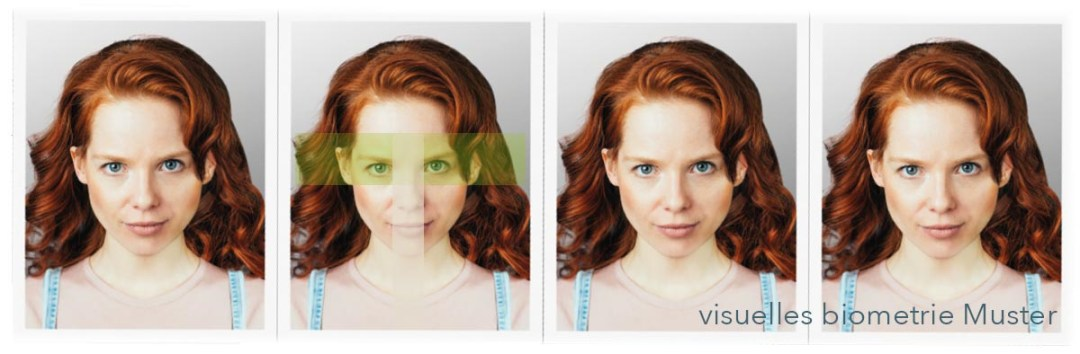 biometrische Passbilder für Reisepass Ausweis Führerschein Visa, Pass / Visum
