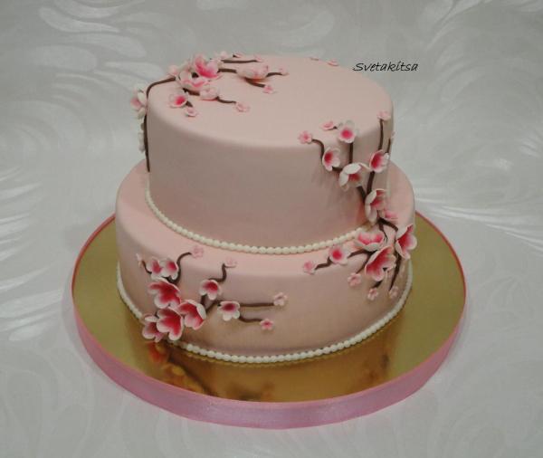 розовый с сакурой торты для детей Фотоальбом участника
