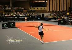 commonwealth-tennis4